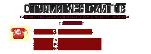 Студия Веб-Сайтов logo